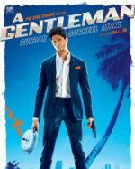 A Gentleman Sundar Susheel Risky (2017)