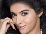 Asin Thottumkal Has No Near Marriage Plans