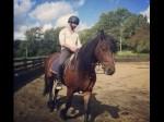 Haider Shandaar Shahid Kapoor Horse Riding Continues