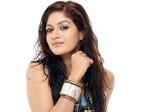 All You Need To Know About Meghana Raj S Boyfriend