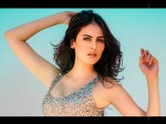 Ishqbaaz Mandana Karimi Claims She Was Sexually Harassed By Film Director Decides To Quit Acting