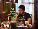 Simba Full Movie Leaked Online Download Tamilrockers Bharath Movie Hit By Piracy