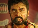 Ngk Full Movie Leaked By Tamilrockers To Download On Day 1 Itself