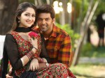 Sayyeshaa And Arya Celebrate Their First Eid As A Couple Photo Inside