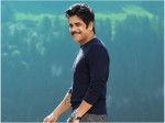 Manmadhudu 2 Box Office Verdict The Nagarjuna Starrer On Its Wato Becoming Disaster