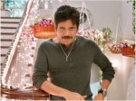 Happy Birthday Nagarjuna Here S How Nags Can Prove That He Is King Of Heart