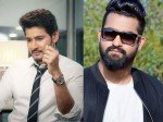 Mahesh Babu Or Jr Ntr Who Will Kgf Director Pick For His Next Movie