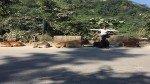 Twinkle Khanna S 6 Cows Joke Wins The Internet Over