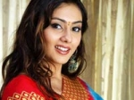 Namitha Small Screen