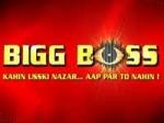 Bigg Boss 3 Contestants
