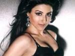 Soha Pathan Charming