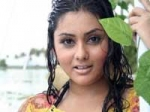 Namitha Bar Dancer