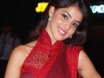 Genelia Slams Marriage