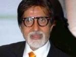 Amitabh Idol Newcomer