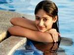 Ileana Flies Sandalwood