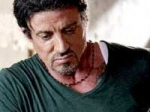 Stallone Julia Box Office