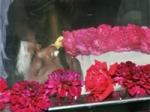 Tamil Actors Final Respect Murali