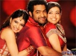 Brindavanam Ntr Waves Box Office