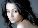 Trisha Worried Bollywood Offers