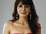 Bigg Boss4 Aanchal Succeeds Dolly