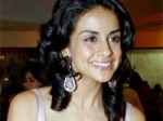 Gul Panag Getting Married 110311 Aid