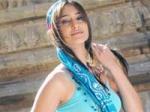 Ileana Blames Meher Ramesh Shakti 130411 Aid
