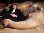 Water For Elephants Bosses Animal Abuse 110511 Aid