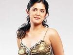 Deeksha Seth Silambarasan Vettai Mannan 270511 Aid