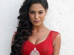 Veena Malik Swayamvar Next Year 090611 Aid