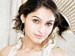 Andrea Jeremiah Lands Controversy 210611 Aid