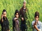 Sahi Dhande Galat Bande Review