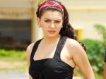 Haniska Motwani Gangster Simbu