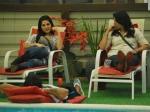 Bigg Boss 5 Juhi Pooja Sidd Sunny Bollywood