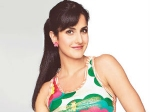 Katrina Kaif Want Meet Pitbull
