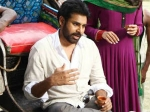 Panjaa Dips Box Office