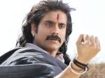 Nagarjuna Influential Character Rajanna