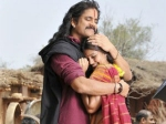 Rajanna Box Office Collections