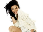 Shruti Hassan Film 3 Lucky Career