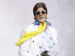 Amitabh Bachchan Light Bihar Diwas Celebrations
