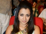 Trisha Bursts Tears Dammu