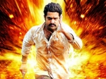 Jr Ntr Dammu First Day Collection Box Office