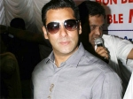 Salman Khan Ex Girlfriend Praise Ek Tha Tiger