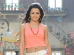 Trisha Walk Out Ravi Teja Sir Osthara