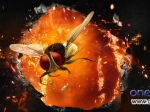 Eega Naan Ee And Eecha Releasing July 6 Rajamouli