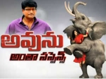 Avunu Movie Review