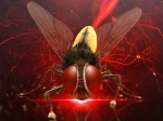 Eega Makkhi Not Copy Cockroach Ss Rajamouli