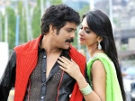 Damarukam Routine Love Story Collection Usa Box Office