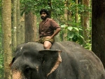 Kumki Start Box Office