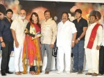 Photos Celebs Gundello Godari Platinum Disc Function