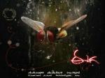 Rajamouli Eega Bags 2 National Film Awards